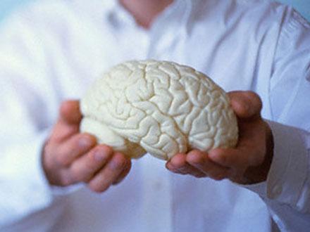 Какие участки мозга отвечают за навык чтения?