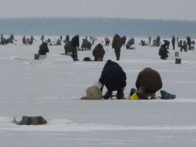 Рыбаки в Ейском лимане