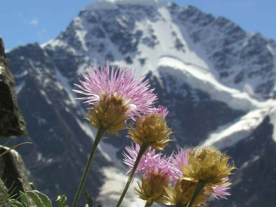 Чеченский горнолыжный курорт