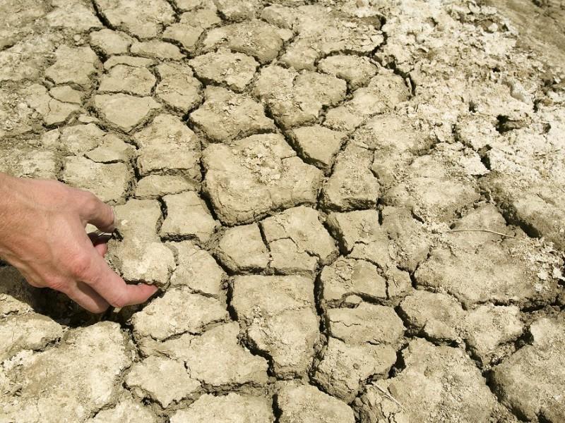 Как из глины сделать плодородную почву
