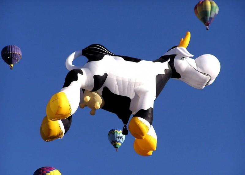 Не в деньгах счастье, а в… корове
