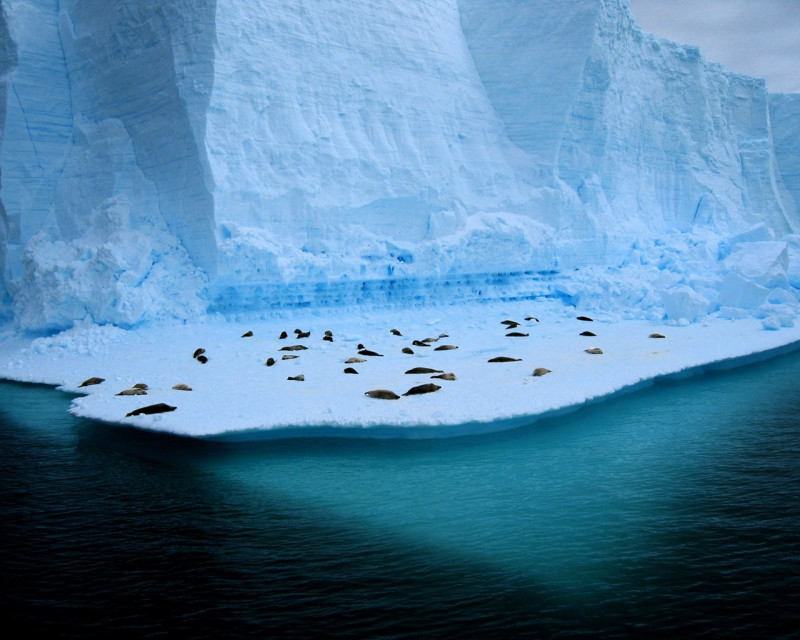 Озеро Восток в Антарктиде раскрывает секреты