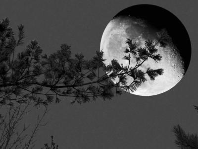 Луна — единственный естественный спутник Земли на самом деле является ее частью