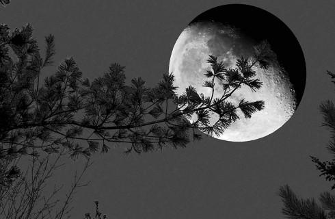 Земная луна