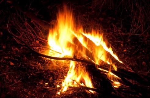 Первый костер разожгли миллион лет назад