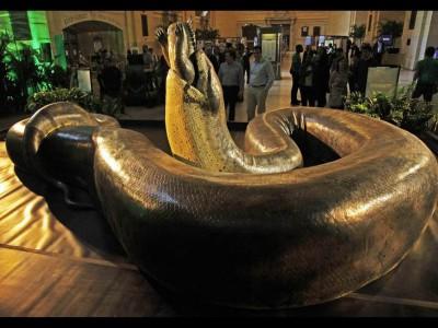 Муляж змеи в натуральную величину в Смитсоновском музее естественной истории в США