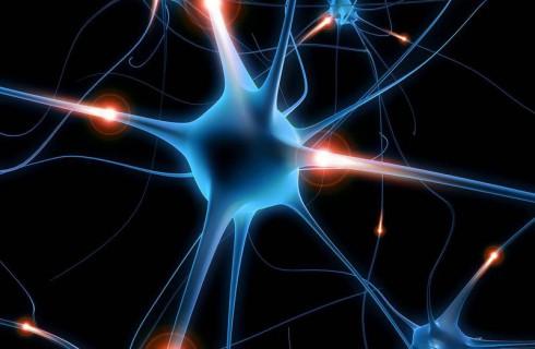 Открытие в области нейрохирургии