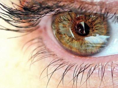 Программа позволяет отслеживать даже невидимые невооруженным глазом движения