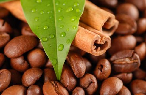 Кофеин помогает справиться с болезнью Паркинсона