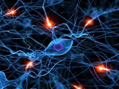 Ухудшение оттока продуктов метаболизма из мозга может вызвать нарушение нейронных связей