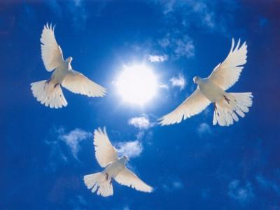 Вера, Надежда, Любовь