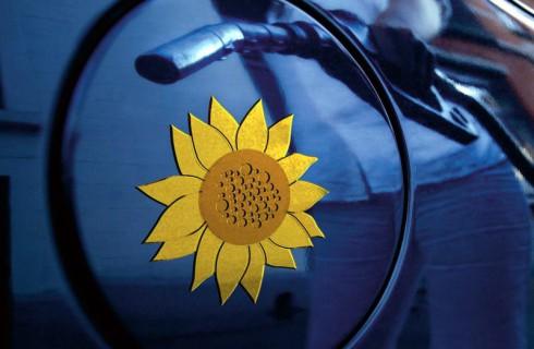 Миф о биотопливе