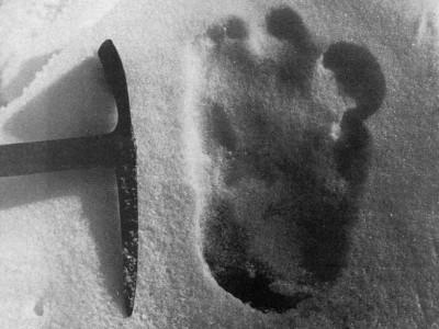 След Снежного человека