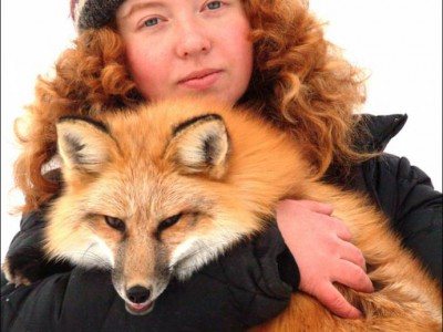 Удивительная лисица на руках у Ирины Мухаметшиной