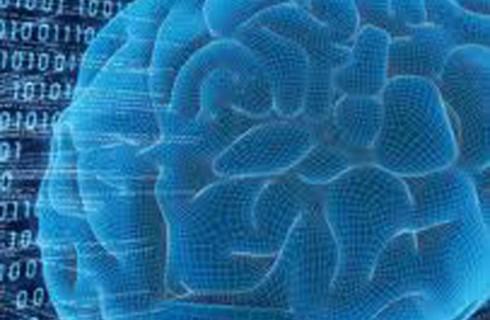 Стали известны причины возникновения разума