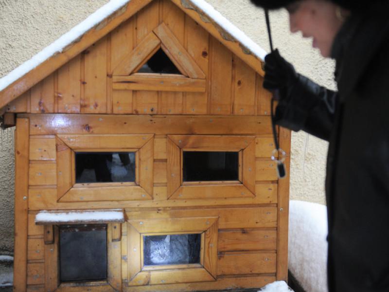 Как сделать для кошки зимний дом