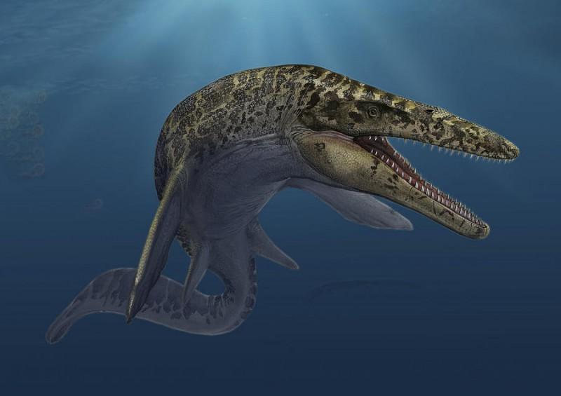 В Венгрии найдены останки пресноводного динозавра