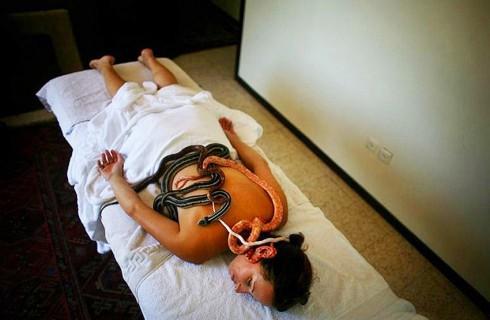 Змеи-массажисты