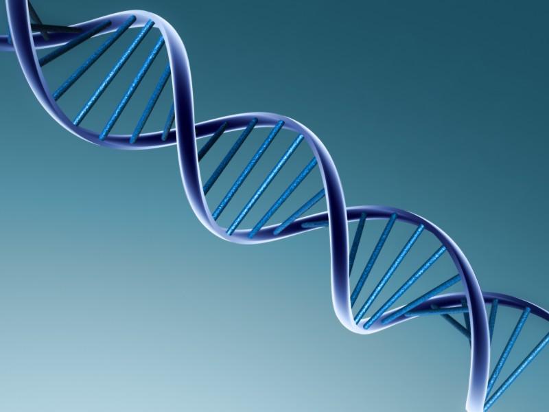 Хакер идентифицировал человека по геному