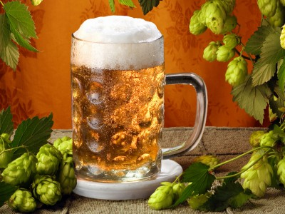 Пиво спасет людей от рака
