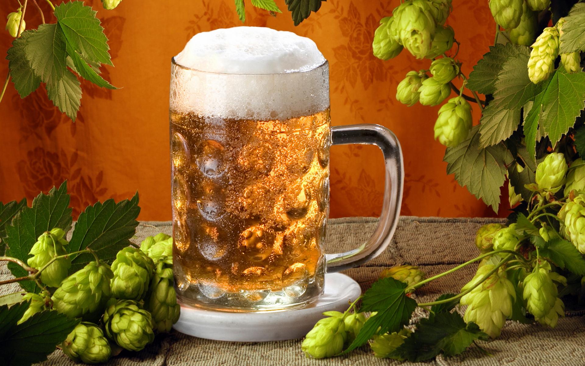 Как сделать пиво из хмеля фото 17