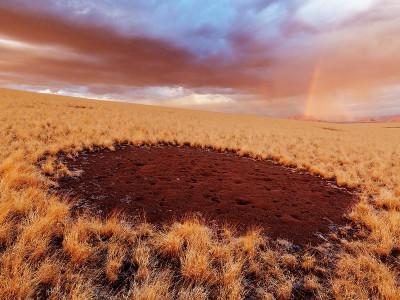 Ученые раскрыли тайну «волшебных кругов» Намибии