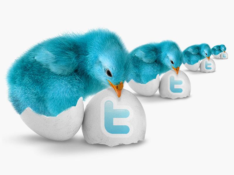 Простые правила благополучия в Twitter