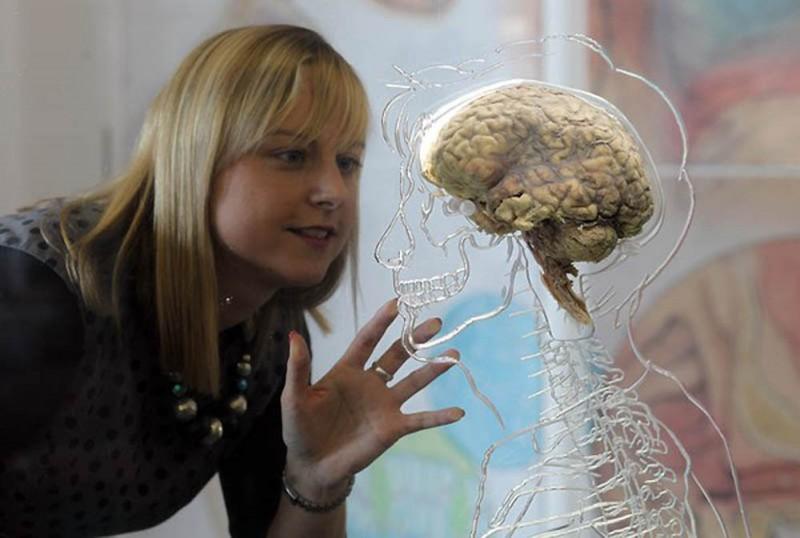 Мозг мужчины не понимает женских эмоций