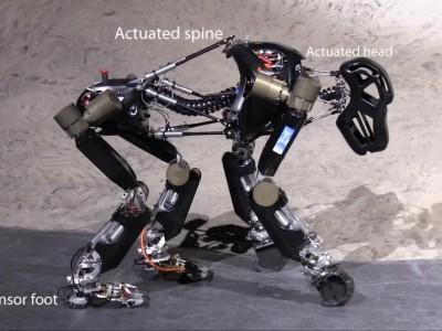 Обезьяны-роботы будут отправлены на луну