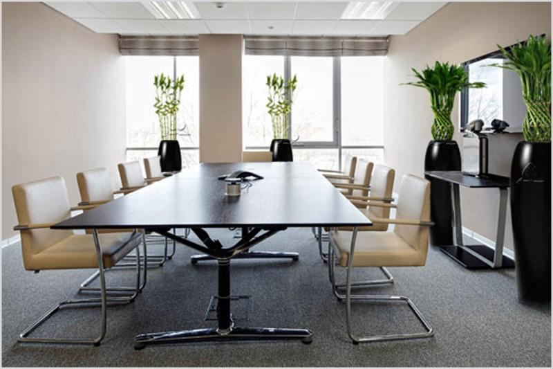 Искусственные растения для офиса: живость рабочего интерьера!