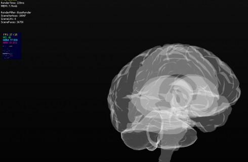 Ученые создали 3D-модель человеческого мозга