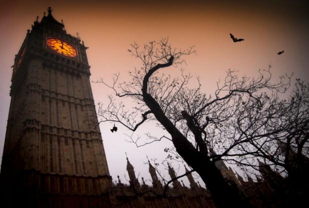 Холодная весна стала причиной снижения популяции летучих мышей в Великобритании