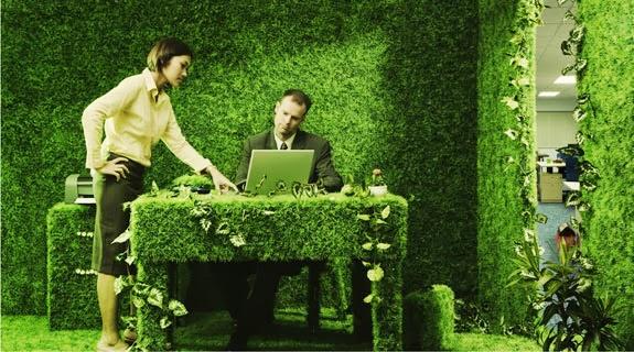 Как создать зеленый офис
