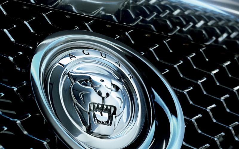 Новый «паркетник» от Jaguar представят осенью