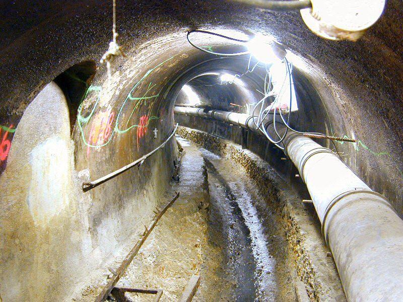 Осетры контролируют состояние столичной канализации