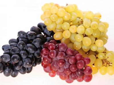 Виноград и черника – лучшие помощники иммунитета