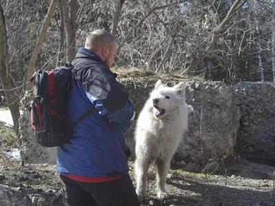 Пёс-спасатель Макки