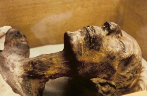 В Йоркшире обнаружена мумия