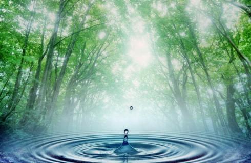 Святая вода не прошла пробы