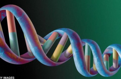 Голодный ген