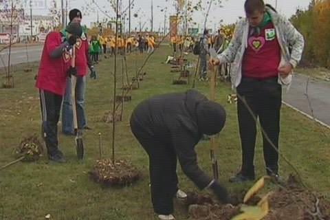 Жители Сургута посадили тысячу деревьев