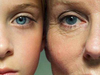 Google изучает процесс старения