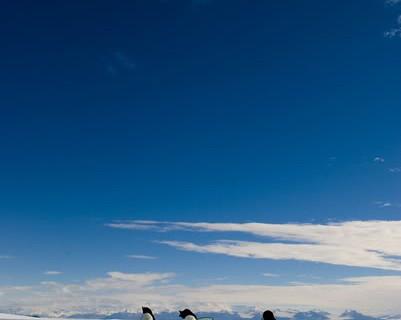Льды Антарктиды скрывали действующий вулкан