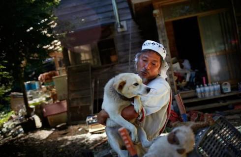 Японец живет в зоне отчуждения Фукусимы ради своих животных