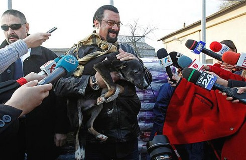 Стивен Сигал взял на попечение бездомного пса
