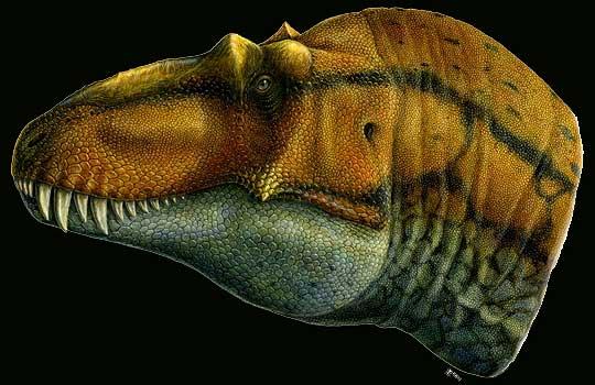 Найден предок тираннозавров