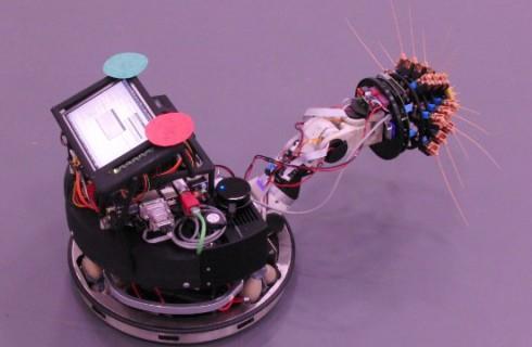 Shrewbot