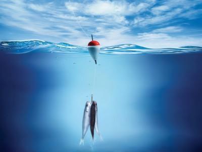 Секреты отличной рыбалки