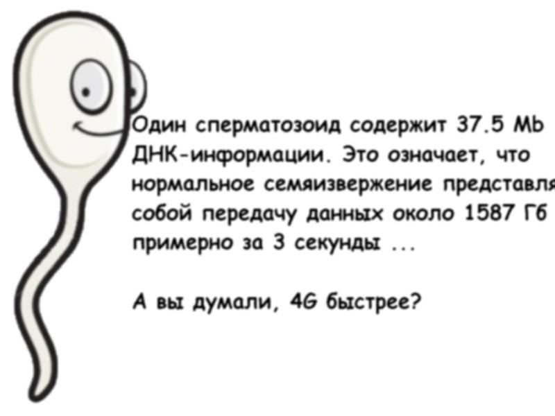 esli-net-dvizheniya-spermatozoidov