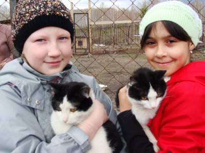 Дети берут шефство над приютом для бездомных животных